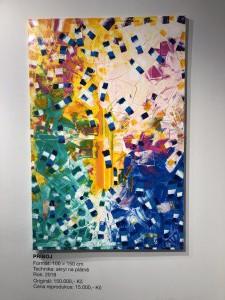 ve-vodopadu-barev-41